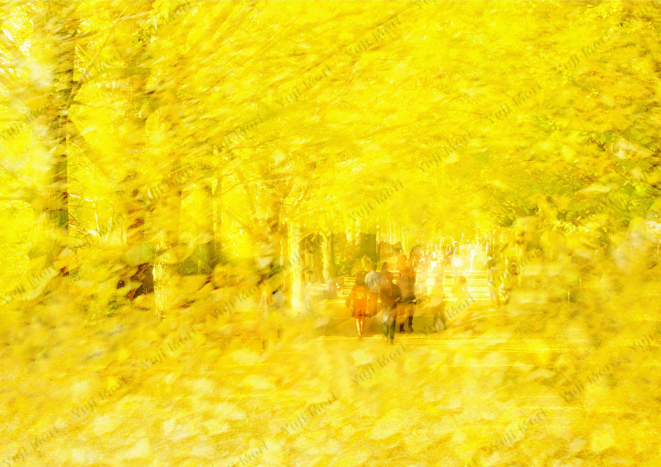 秋の銀杏並木 多重露光で色彩を強調。 人物の服がアクセント。